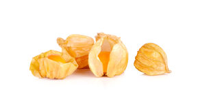 Cape gooseberry, physalis isolated on white background Royalty Free Stock Photos