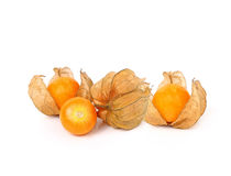 Cape gooseberry (physalis) isolated on white background.  Royalty Free Stock Images