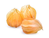 Cape gooseberry,physalis isolated on white background Royalty Free Stock Photos