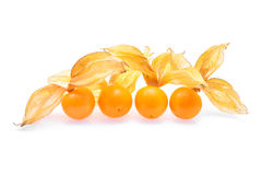 Cape gooseberry,physalis isolated on white background Stock Photography