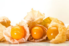 Cape gooseberry, Physalis on a white background Royalty Free Stock Photography