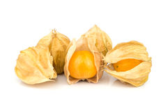 Cape Gooseberry. royalty free stock images