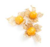 Cape gooseberry Stock Photos