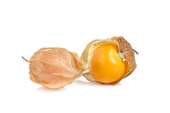 Cape gooseberry on white background Stock Images