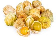 Cape gooseberry on white background Stock Image