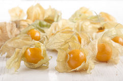 Cape gooseberry on white wood Stock Images