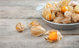 Cape gooseberry Royalty Free Stock Photography
