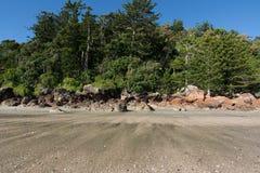 Cape Hillsborough beach royalty free stock photos