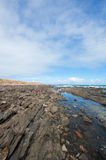 Cape Jervis Shoreline Stock Images