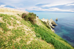 Cape Kidnappers Gannet Colony Stock Photos