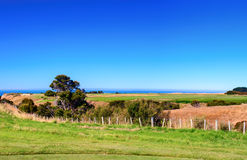 Cape Kidnappers golf court. New Zealand Royalty Free Stock Photo