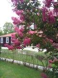 Cape May Нью-Джерси стоковые изображения