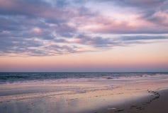 Cape May, NJ, strand och hav i violetta toner p? soluppg?ng royaltyfri bild