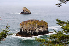 Cape meares state park stock photo