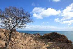Cape Naturaliste Stock Photos