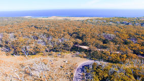 Cape Otway Nationa Park, Australia. Aerial view Royalty Free Stock Photo