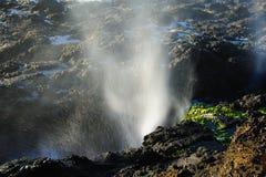 Cape Perpetua Blast Stock Image