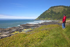 Cape Perpetua, Oregon coast. Royalty Free Stock Photos