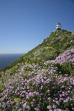 Cape point stock images