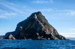 Cape Point. A Cape Point landscape from the water stock images