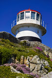 Cape Point Lighthouse and wildflowers. Lighthouse at Cape of Good Hope, South Africa with wildflowers Royalty Free Stock Photography