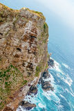 Cape Point near the Cape of Good Hope South Africa Royalty Free Stock Photos