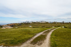 Cape Polonius. Road marked by car tires amid verdant greenery on polonium cape Stock Photo