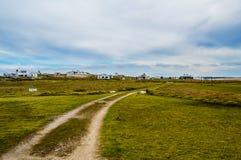 Cape Polonius. Road marked by car tires amid verdant greenery on polonium cape Royalty Free Stock Photo