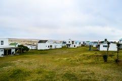 Cape Polonius. Road marked by car tires amid verdant greenery on polonium cape Royalty Free Stock Photos