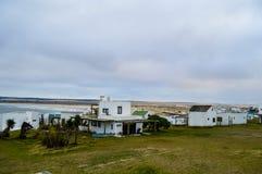 Cape Polonius. Road marked by car tires amid verdant greenery on polonium cape Stock Photography