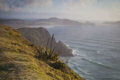 Cape Reinga New Zealand Royalty Free Stock Photography
