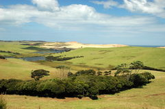 Cape Rienga. Green landscape in Cape Rienga, NZ Royalty Free Stock Photo