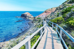 Cape Schanck coastline, Victoria - Southern Australia Royalty Free Stock Photos