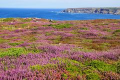 Cape Sizun, Pointe du Raz. Brittany, France Stock Photos