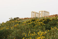Cape Sounion Temple Royalty Free Stock Photo