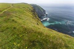 Cape St. Mary's coastline Royalty Free Stock Photos