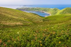 Cape Sukoton, Todo Island, and the Wildflowers of the Cape Tour Stock Photo