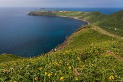 Cape Sukoton and the Wildflowers of the Cape Tour Course on Rebun Island, Japan stock photos