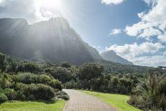 Cape town botanic garden Royalty Free Stock Photo