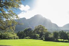 Cape town botanic garden Stock Image