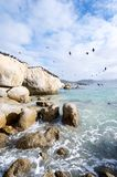 Cape town Boulders Royalty Free Stock Images