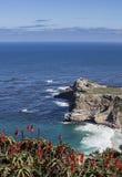 Cape town coast Royalty Free Stock Photo