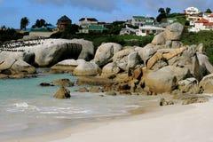 Cape Town e louro falso, África do Sul imagem de stock