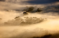 Cape Town Mists. Early morning fog settles over Cape Town suburbs stock image