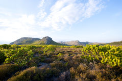 Cape Town Silvermine reserve Stock Photo