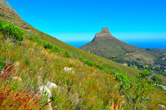 Cape Town tabell Mountain View Royaltyfria Foton