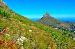 Cape Town-Tafelberg-Ansicht Lizenzfreie Stockfotos