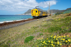 Cape Town Train. Spring flowers and train along Simonstown coastline near Cape Town Stock Image