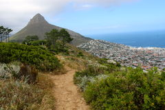 Cape Town view Royalty Free Stock Photos