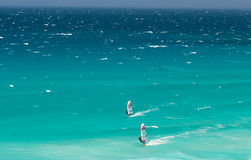Cape Town Windsurfers Stock Photography